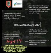 Tips mencegah DBD